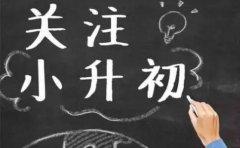 金泽教育金泽教育《冲关名校》助力六年级升学